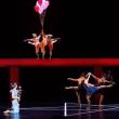 モーリス・ベジャール・バレエ団 Aプロ『魔笛』 @東京文化会館(11月19日)