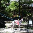 軽井沢での夏休み(くつかけダイニング)