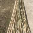 竹で作れるって🎵