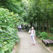 マッキーの『四季を楽しむ』:あじさい観賞に北鎌倉を散策(上)