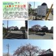 花巡り 「桜-その421」 久喜東3丁目公園