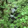 深き緑の谷