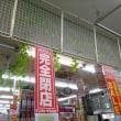 和光市ドンキホーテ、閉店です!