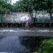 雨の日の木曜日