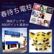 #春待ち電柱 で お好みのSNSにアップ ⇒ 500ポイント進呈中!(^^)