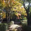 由布院温泉 梅園さんの紅葉 2017