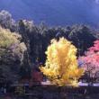 紅葉の御岳渓谷