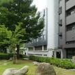 隅田公園の石