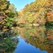秋晴れの日に。。。紅葉狩り☆