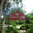 究極親子丼(栃木県 那須高原 ホテルエピナール那須 菜す乃)