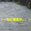 『酷暑』の次は≪大雨≫・・♫