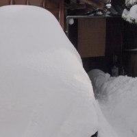 積雪45cm。雪だるまではなく、車です。以前、大雪警報継続中。
