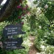 秘密の花園
