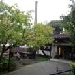 お祝い事でランチ 茅ヶ崎・熊澤酒造
