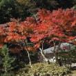 北鎌倉 円覚寺