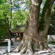 淡路島に来たら「伊奘諾神宮」にも寄らねば