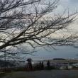 昨日の城山公園です