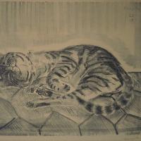藤田嗣治 「横になる猫」