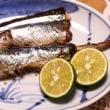 三色丼&焼き魚(秋刀魚)