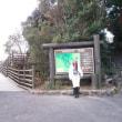 伊勢志摩の賢島と三島の吊り橋「スカイウオーカー」行ったです!