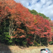 ••六甲山をドライブ••