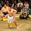 大相撲初場所中盤戦