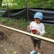 22-23Jul2017虫キャンプ@かずさの森