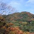 金立山…「緑のシャワーロード」の紅葉…