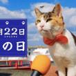 2月22日(木)猫の日、ヘッドホンの日、忍者の日、おでんの日、晴れとるよ。(^_^;)
