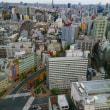 東京最終日