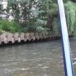 とことん嫌われた依田川の鮎釣り