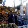 平成30年1月4日柳谷素霊先生墓に参拝