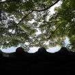 京都に浸かる・蓮華寺