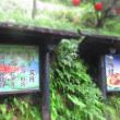 柳井・岩国一人旅⑦『いろり山賊』で呑む朝ビールと鶏(後編)