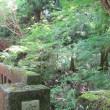 初夏の伊豆旅で天城散策_17.06.10-11