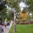 トルコ一周とカッパドキアの旅<コンヤのアラアッデン・モスクなど>