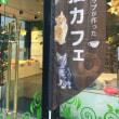 猫カフェ 赤坂見附