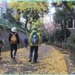 増上寺~愛宕神社~神谷町緑道  ウォーキングサークルつくし・12月7日
