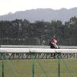 レッドオルティス 京都6R 3歳新馬 芝1800m