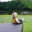 日本昔話の景色が広がる「美山かやぶきの里」。