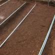 タマネギの苗作り続き。施肥とマルチ張りをしました。完成です。