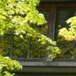 由布院温泉 亀の井別荘さん