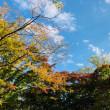秋を感じる今日この頃^ ^
