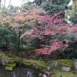 近江 多賀の三社詣り。伊勢の親神さま「多賀大社」。秀吉ゆかりの奥書院の庭園など