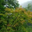 信州で秋の気配