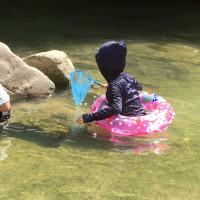 夏休みの思い出   川遊びと亀プー