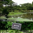 江戸3ブーム(城・刀・女)徳川家康公・江戸城ガールズ・江澤廣・氣天流