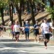 秋のマラソン大会