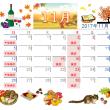 11月の休診日カレンダー 2017