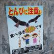 九州から 4